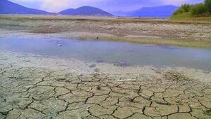 Sulak alanlar yok oluyor Tehlikenin farkında mıyız