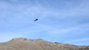Soylu ve Kurum, deprem bölgesini helikopterden inceledi