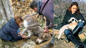 Hayvanların iyilik meleği