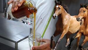 Bu da maydanoz balı İlgi görmeyince atlara yediriliyor
