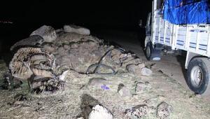 Boru hattından petrol hırsızlığına 14 tutuklama
