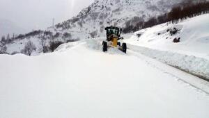 Bingölde 252 köy yolu, kardan kapandı