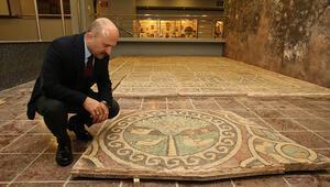 1800 yıllık elmalı mozaik, Amasya Arkeoloji Müzesi'nde sergilenecek