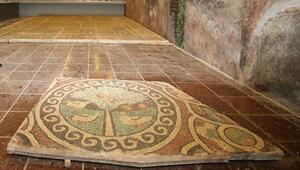 1800 yıllık elmalı mozaik Amasya'nın sembollerinden biri olacak