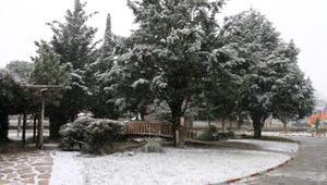 Burdura mevsimin ilk karı