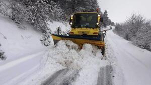 Ödemişte 50 santimetreyi bulan karla mücadele sürüyor