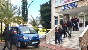 Hayvan hırsızlarına jandarmadan operasyon: 1 tutuklama