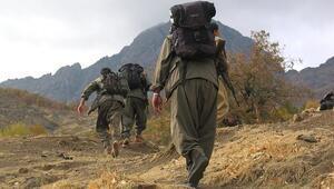 Şanlıurfada 3 PKK/YPGli terörist teslim oldu