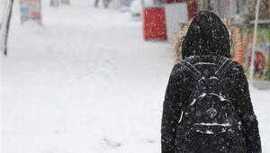Son dakika haberler... Van Valiliği açıkladı: Okullara bir gün kar tatili