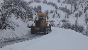 Adıyamanda 111 köy ve mezra yolu kardan kapandı