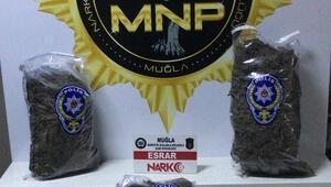 Muğlada uyuşturucu operasyonunda 5 şüpheli gözaltı alındı