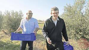 Türk ve Rum iki arkadaştan Kıbrıs'ta zeytin barışı