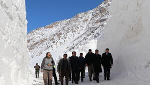 Van Valisi Mehmet Emin Bilmez, çığ bölgesinde incelemelerde bulundu