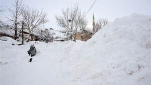 Bitliste okullara 2 gün kar tatili