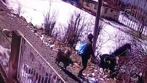 Kayıp çoban ölü bulundu; 3 gün önce gasp edildiği ortaya çıktı