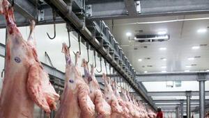 Şarbon hastalığı tespit edildi Mezbaha ve havyan pazarı kapatıldı