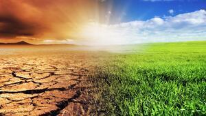 İklim krizine karşı bugün atılması gereken 3 adım
