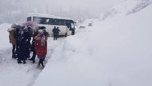 Şemdinlide yoğun kar yağışı nedeniyle araçlar yolda kaldı