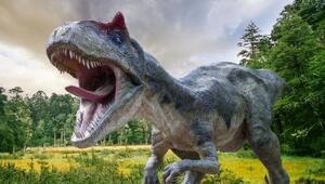 130 milyon yıllık dinozora ait ayak izi ortaya çıktı