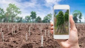 Dijital tarım uygulamaları üreticiye neler sunuyor