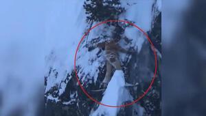 Kayakları kayalara sıkıştı, böyle kurtarılmayı bekledi