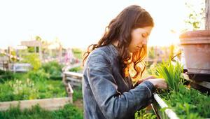 Şehirde tarım artık daha kolay