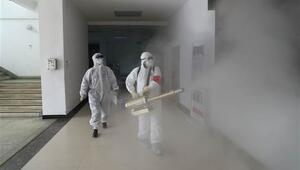 Koronavirüs nedeniyle Yeni Zelanda ve Kuzey Korede yeni önlemler alındı