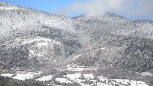 Safranbolunun ormanları beyaza büründü