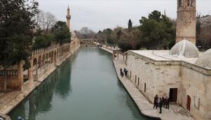 Peygamberler şehrinde hedef İslam Dünyası Turizm Başkenti seçilmek