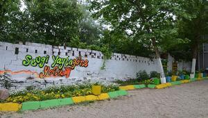 Kadınlar en güzel köyde turizm için kolları sıvadı