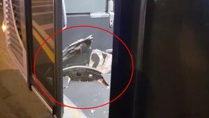 Akılalmaz kaza Yerinden çıkıp metrobüse saplandı…