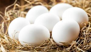 Yumurtanın faydaları nelerdir Yumurta