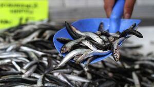 Martta hangi balıklar yenir Mart ayında yenilmesi gereken balıklar