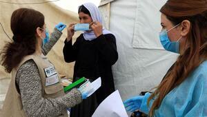 Mısır, Lübnan ve Irakta koronavirüs vakaları arttı