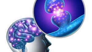 Nöroloji nedir nöroloji ne demek Nöroloji doktoru (Nörolog) neye ve hangi hastalıklara bakar