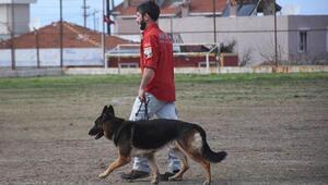 K9 köpekleri, itaat ve doğa arama sınavlarıyla test edildi