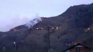 Trabzondaki orman yangınları kontrol altında