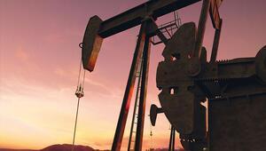 Petrol savaşında geri adım yok