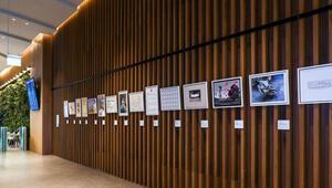 İstanbul Bienalinin 30. Yıl Özel Projesi İstanbul Havalimanında sergileniyor