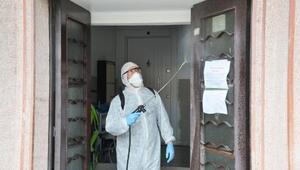 Kayseri Şekerde virüs temizliği