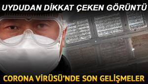 Corona virüsü son dakika: İranda uydu görüntülerindeki kireç detayı dikkat çekti, Bakan Koca vaka sayısını duyurdu.. İşte son durum