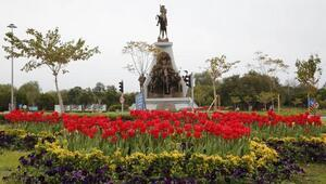 Büyükşehir, kenti çiçek bahçesine çevirdi