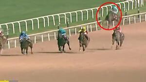 At yarışında yürek yakan görüntü Başında ağladı...
