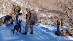 Özel eğitimli köpeklerin tespit ettiği patlayıcılar imha ediliyor