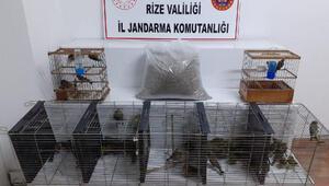 Nesli tükenen 61 kuşu avladı, 47 bin lira ceza uygulandı