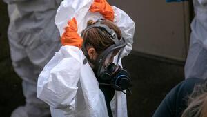 ABDde Corona Virüsü nedeniyle ölü sayısı artıyor