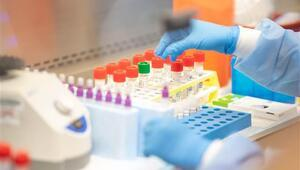 Avustralya'da yeni tip Corona Virüsten ölenlerin sayısı 6'ya yükseldi