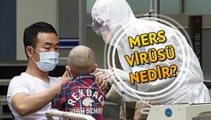MERS virüsü nedir MERS belirtileri nelerdir, nasıl bulaşır
