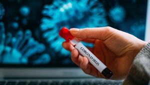 Koronavirüsle ilgili tüm merak edinlenler
