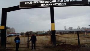 Ercişte açık hayvan pazarı kapatıldı
